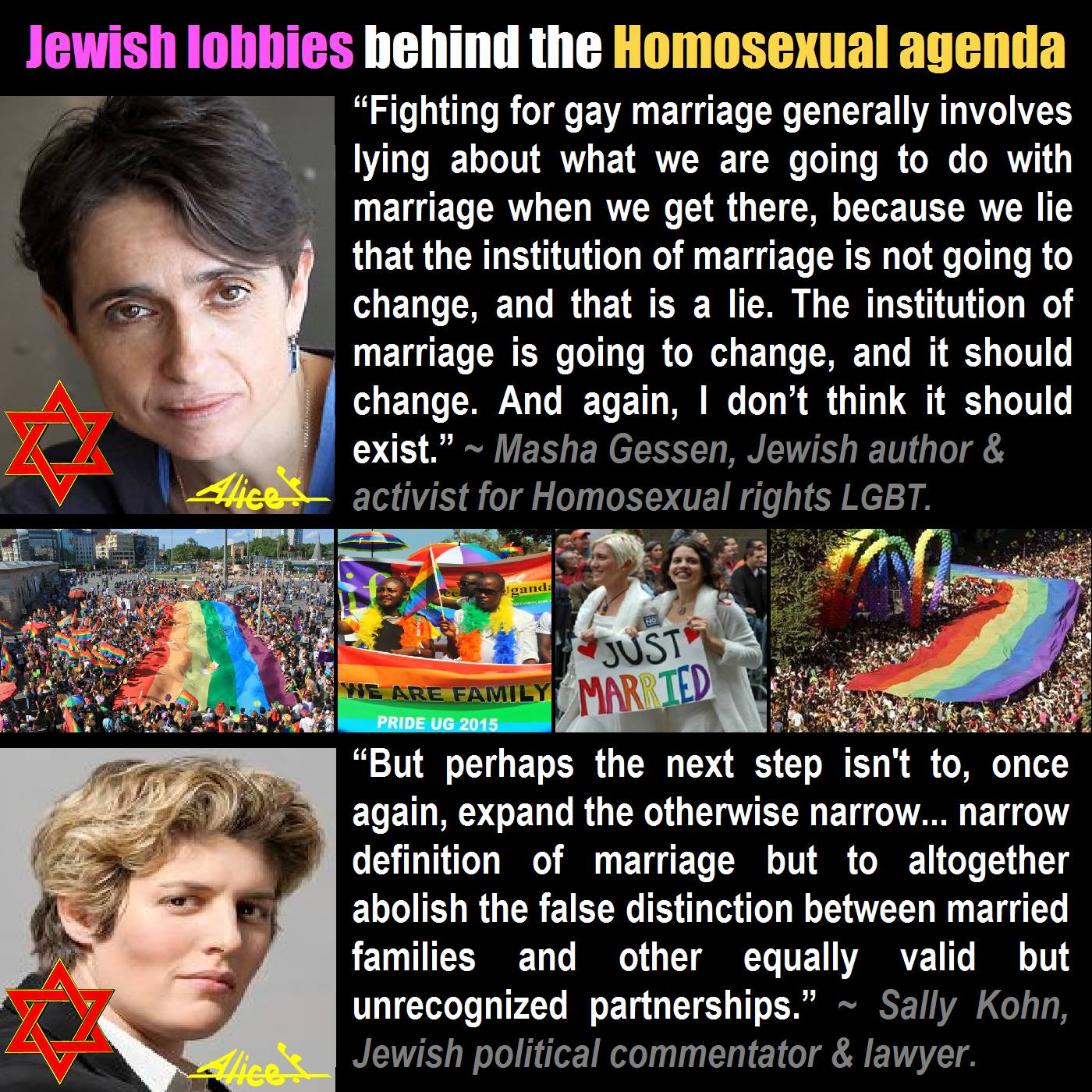 What does homosexual agenda mean